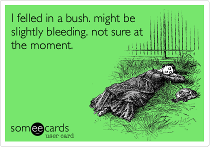 I felled in a bush. might be slightly bleeding. not sure at the moment.