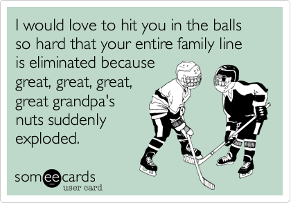 I would love to hit you in the balls so hard that your entire family line is eliminated because great, great, great, great grandpa's nuts suddenly exploded.