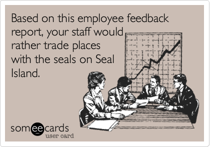 Based on this employee feedback report, your staff would rather trade places with the seals on Seal Island.