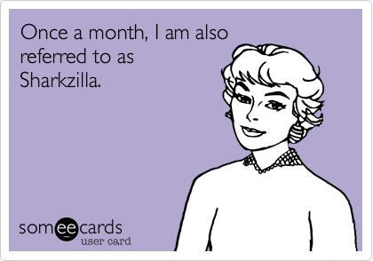 Once a month, I am also referred to as Sharkzilla.