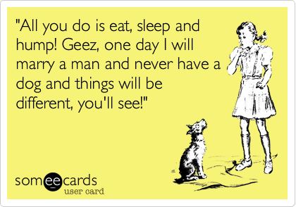 """""""All you do is eat, sleep and hump! Geez, one day I will marry a man and never have a dog and things will be different, you'll see!"""""""