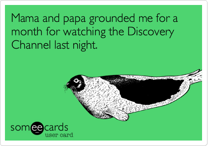 Mama and papa grounded me for a month for watching the Discovery Channel last night.