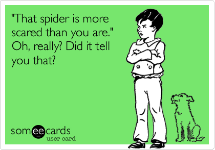 """That spider is more scared than you are."" Oh, really? Did it tell you that?"