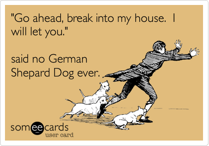 """""""Go ahead, break into my house.  I will let you.""""  said no German Shepard Dog ever."""