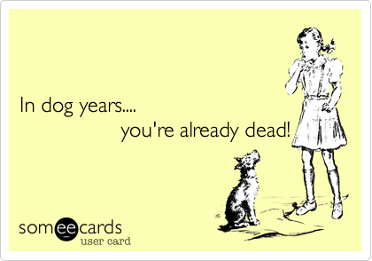In dog years....                  you're already dead!