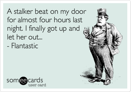 A stalker beat on my door for almost four hours last night. I finally got up and let her out... - Flantastic