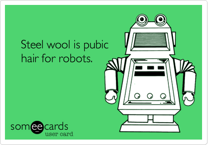 Steel wool is pubic    hair for robots.