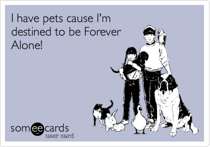 I have pets cause I'm destined to be Forever Alone!