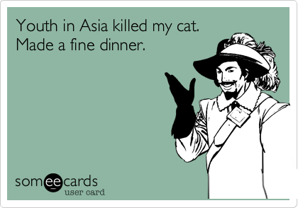 Youth in Asia killed my cat. Made a fine dinner.