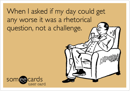 When I asked if my day could get any worse it was a rhetorical question, not a challenge.