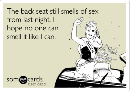 The back seat still smells of sex from last night. I hope no one can smell it like I can.