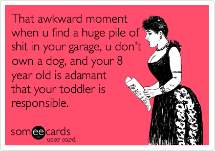 That awkward moment when u find a huge pile of shit in your garage, u don't own a dog, and your 8 year old is adamant that your toddler is responsible.