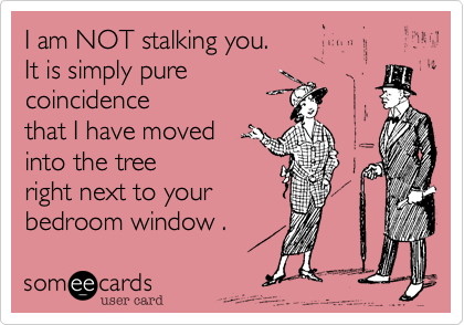 I am NOT stalking you. It is simply pure coincidence that I have moved into the tree right next to your bedroom window .