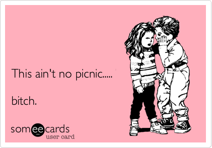 This ain't no picnic.....  bitch.