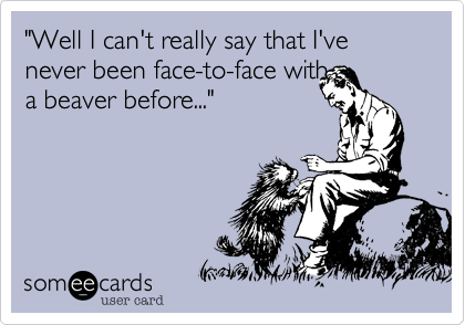"""""""Well I can't really say that I've never been face-to-face with  a beaver before..."""""""