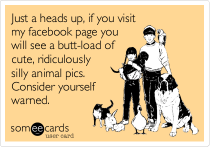 Just a heads up, if you visit  my facebook page you will see a butt-load of cute, ridiculously  silly animal pics.  Consider yourself warned.
