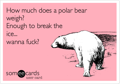 How much does a polar bear weigh? Enough to break the ice    wanna
