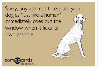 "Sorry, any attempt to equate your dog as ""just like a human"" immediately goes out the window when it licks its own asshole"