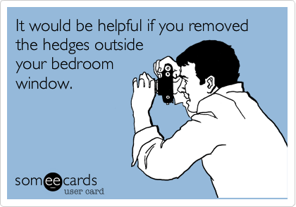 It would be helpful if you removed the hedges outsideyour bedroomwindow.