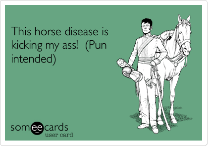 This horse disease iskicking my ass!  (Punintended)