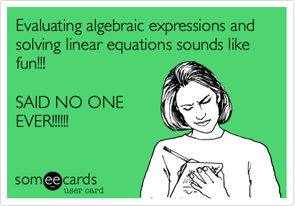 Evaluating algebraic expressions and solving linear equations sounds like fun!!!