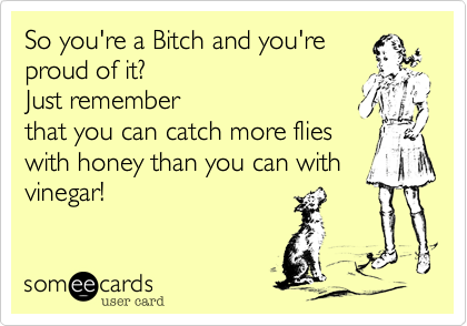 So you're a Bitch and you're