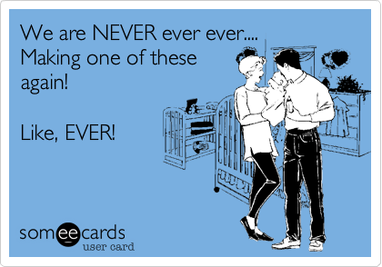 We are NEVER ever ever.... Making one of theseagain!  Like, EVER!