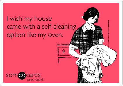 I wish my house came with a self-cleaning option like my oven.