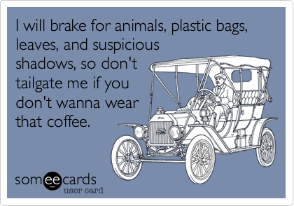 I will brake for animals, plastic bags, leaves, and suspicious