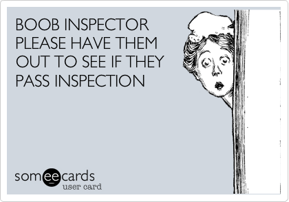 BOOB INSPECTOR