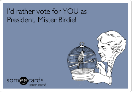I'd rather vote for YOU as President, Mister Birdie!