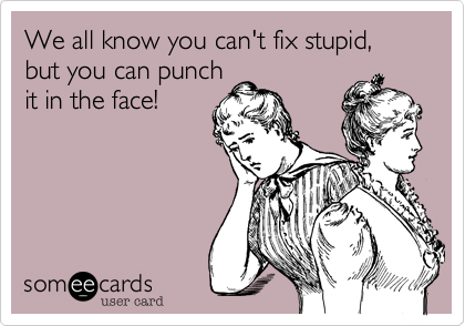 We all know you can't fix stupid, but you can punchit in the face!