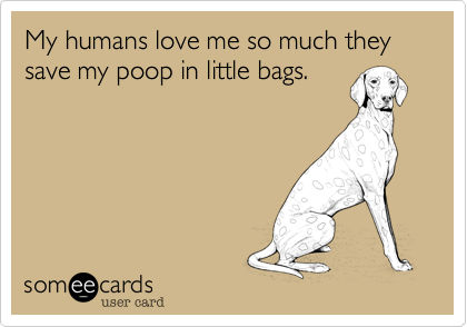 My humans love me so much they save my poop in little bags.