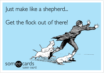 Just make like a shepherd...