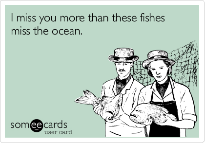 I Miss You More Than These Fishes Miss The Ocean Confession Ecard