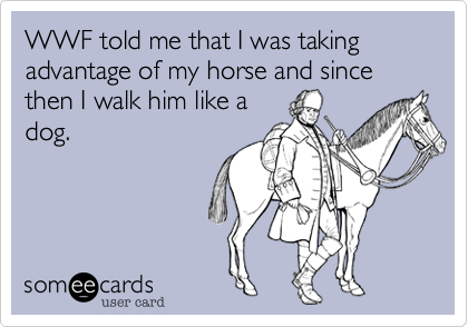 WWF told me that I was taking advantage of my horse and since then I walk him like adog.