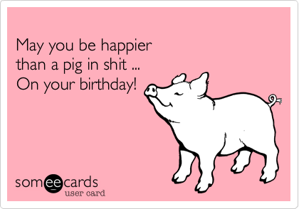 May you be happier than a pig in shit ... On your birthday ...