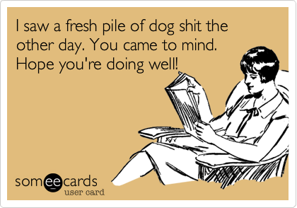 I saw a fresh pile of dog shit the other day. You came to mind.