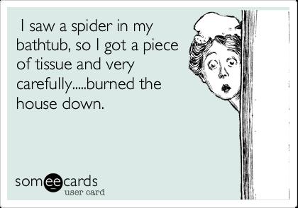 I saw a spider in mybathtub, so I got a pieceof tissue and verycarefully.....burned thehouse down.