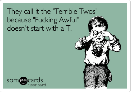 Image result for terrible twos funny