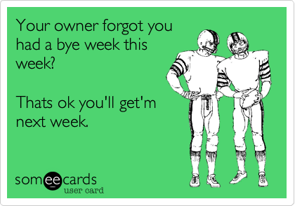 Your owner forgot you