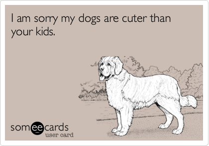I am sorry my dogs are cuter than your kids.