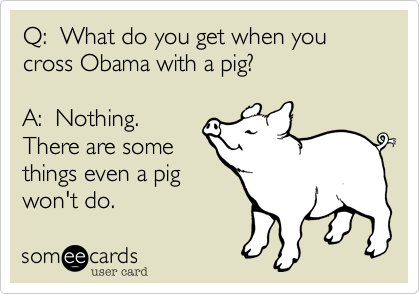 Q:  What do you get when youcross Obama with a pig?A:  Nothing. There are somethings even a pig won't do.