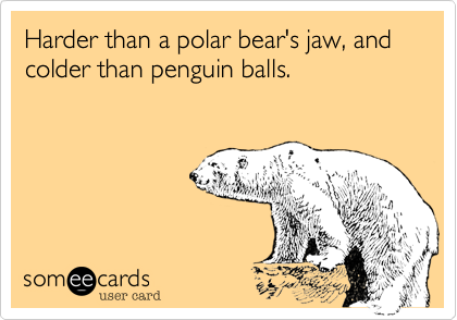 Harder than a polar bear's jaw, and colder than penguin balls.