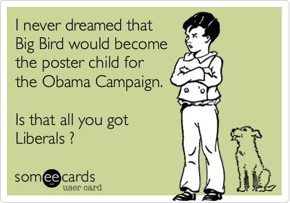 I never dreamed that Big Bird would becomethe poster child forthe Obama Campaign.Is that all you gotLiberals ?