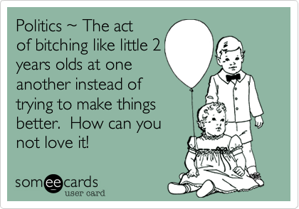 Politics ~ The actof bitching like little 2years olds at oneanother instead oftrying to make thingsbetter.  How can younot love it!