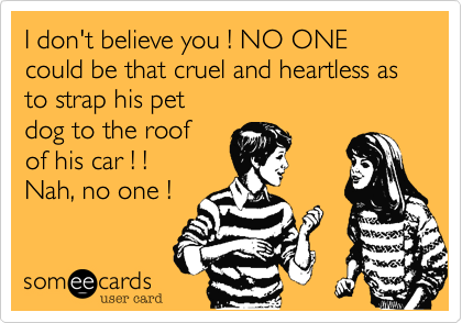I don't believe you ! NO ONE could be that cruel and heartless asto strap his pet dog to the roofof his car ! !Nah, no one !