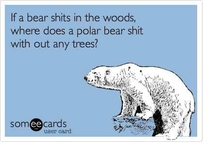 If a bear shits in the woods,where does a polar bear shitwith out any trees?