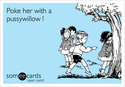 Poke her with a pussywillow !