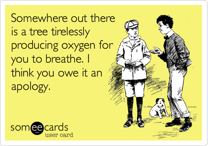 Somewhere out there is a tree tirelesslyproducing oxygen foryou to breathe. Ithink you owe it anapology.